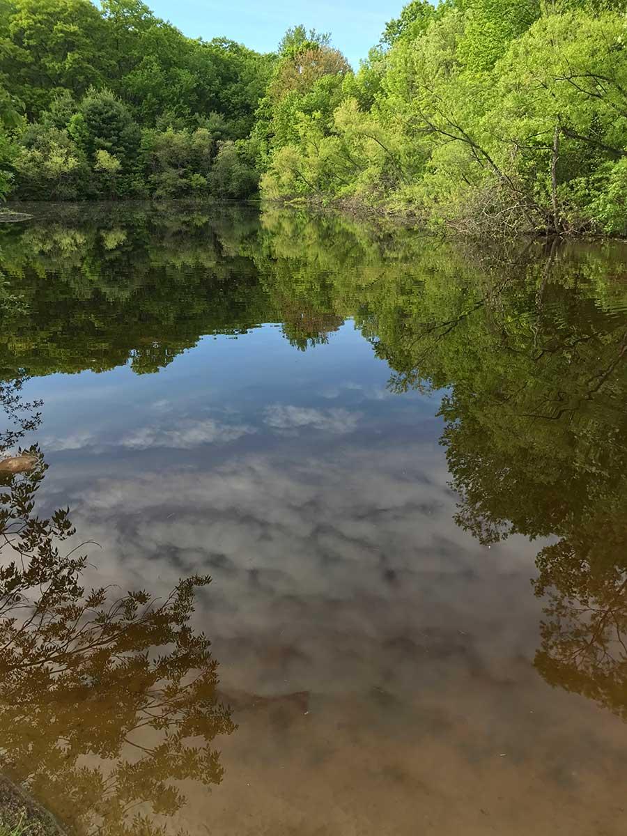 Eagle Pond